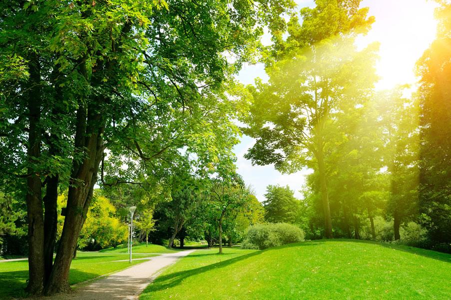 environmental management tender questions